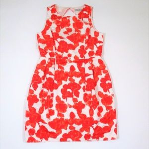 Eliza J 10 Sleeveless Knee length Dress Open Back